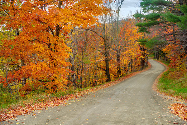 Autumn Road, Southern Vermont